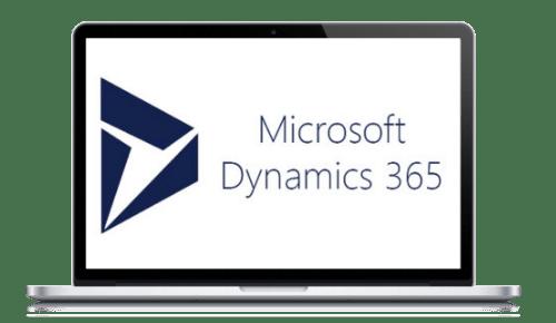 microsoft dynamics 365 support